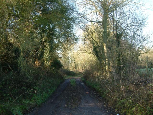 The Track to Little Haseley