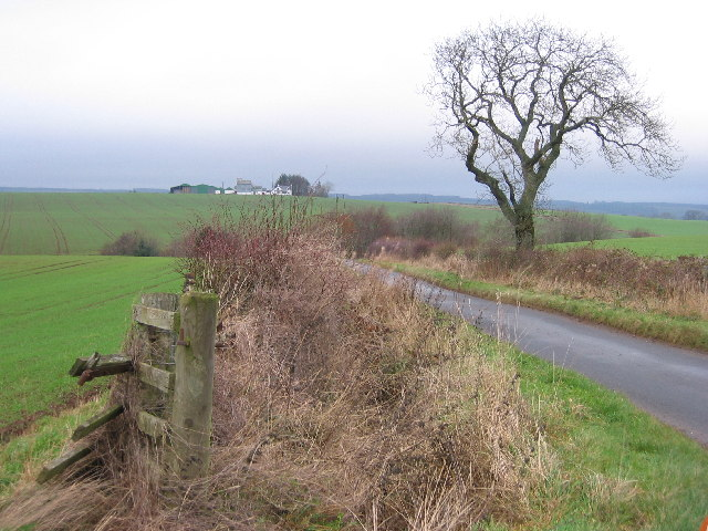 Winter vegetation and farmland
