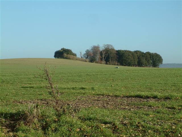 Gilton Hill