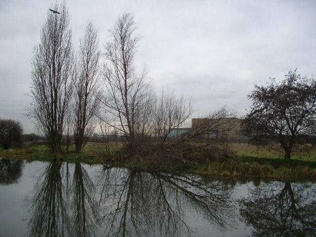 Poplars, raptor, marsh and sub-station..