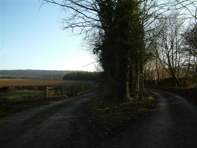 The Tracks to Dame Alice Farm
