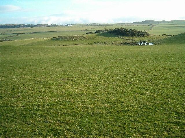 Pastureland at Southend