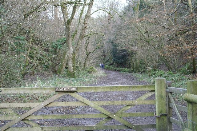 Footpath to Black Rock