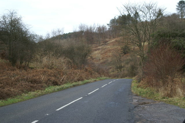 Road at the top of Cheddar Gorge