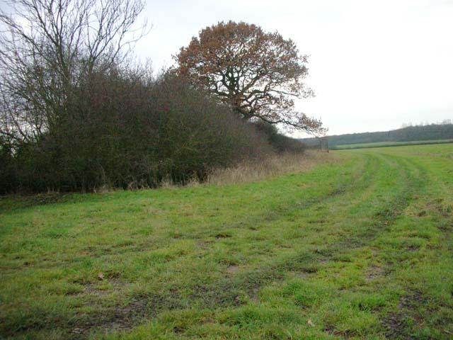 Boundary of Higham Park