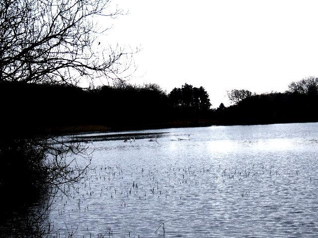 The New Loch, Dunskey Estate near Portpatrick