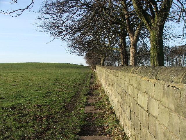 Farnley Park boundary wall.