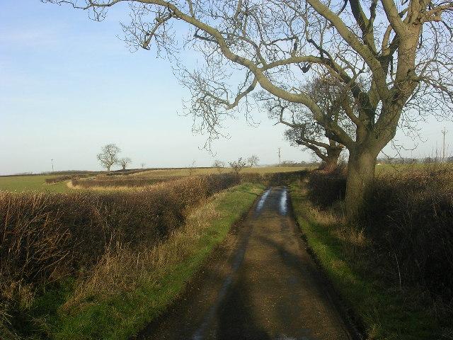Grunton Lane, near Manfield, North Yorkshire