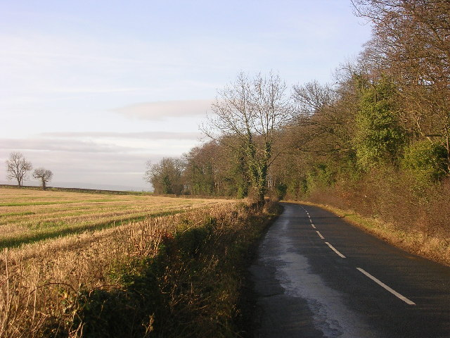 Country road between Manfield and Eppleby, North Yorkshire