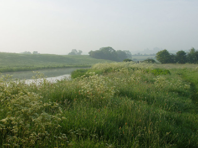 Morning mist by the Nene, Oundle.
