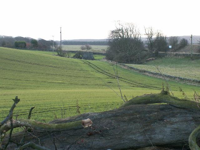 Farmland by Balchrystie