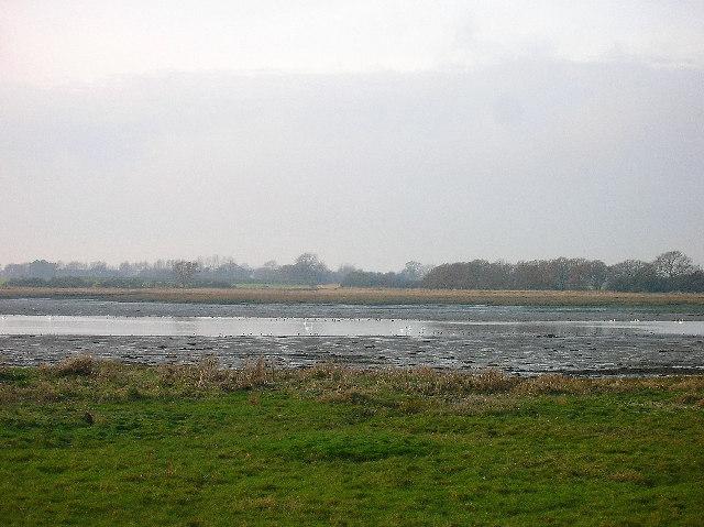 Fishbourne Creek