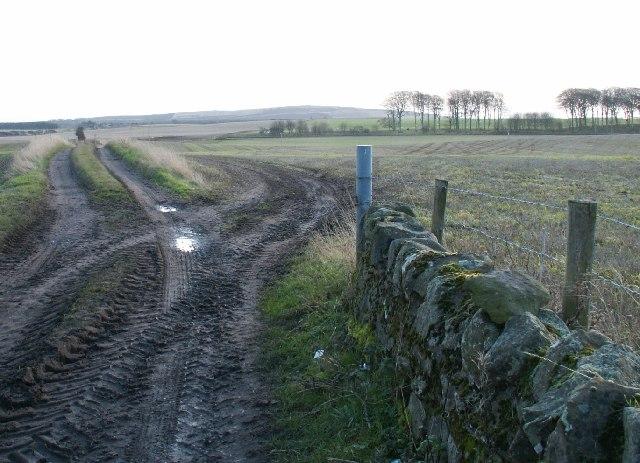 Farm tracks by Balchrystie.