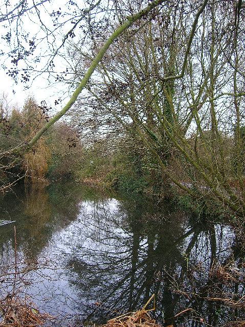 Village pond, Sidlesham