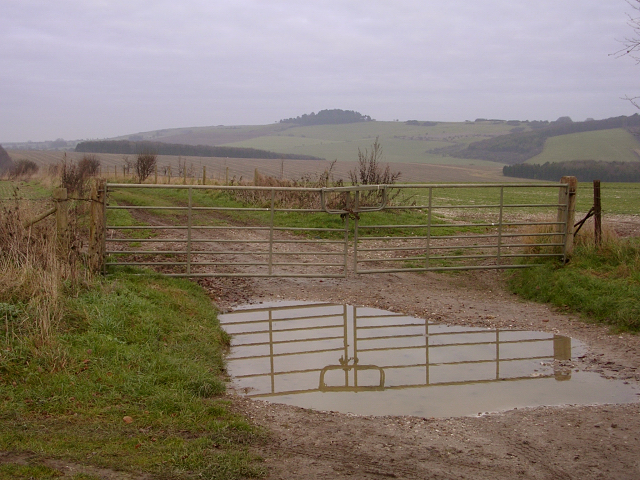 Double gate on Bottlebush Down