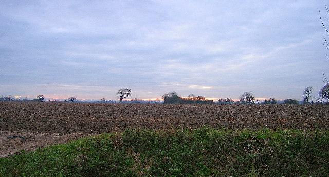 Muddy field near South Mundham