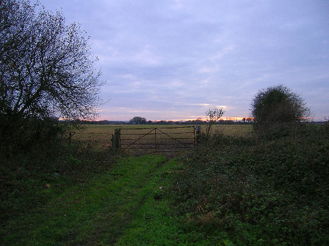 Fisher Common