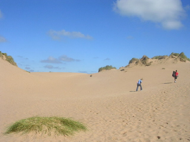 Sand Dunes at Balmedie Country Park