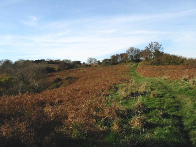 On Watton Hill