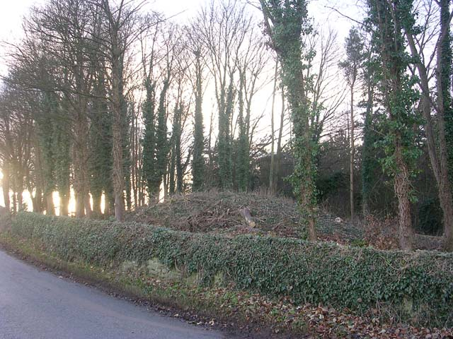 Tumulus near Middleton Tyas, near Richmond, North Yorkshire