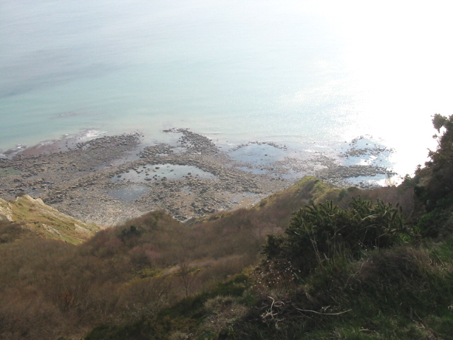 Cliff and seashore below Golden Cap