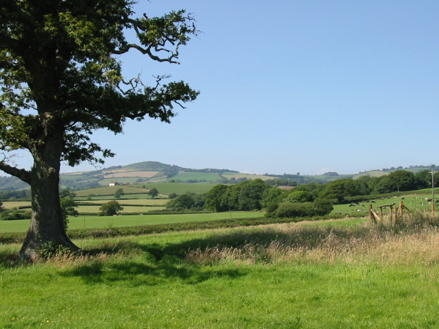 Fields near Paddock's Cross