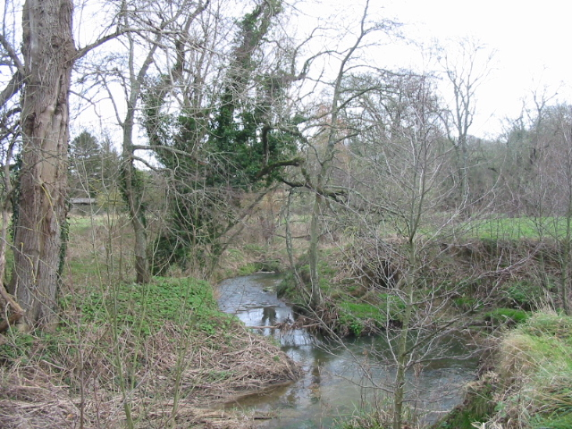 River Brit near Oxbridge