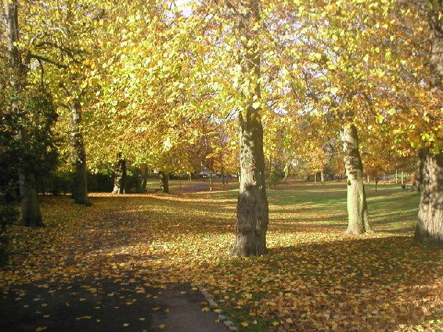Autumn at Victoria Park
