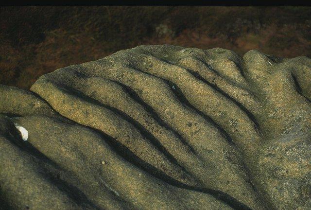 Weathered gritstone, Crow Stones.