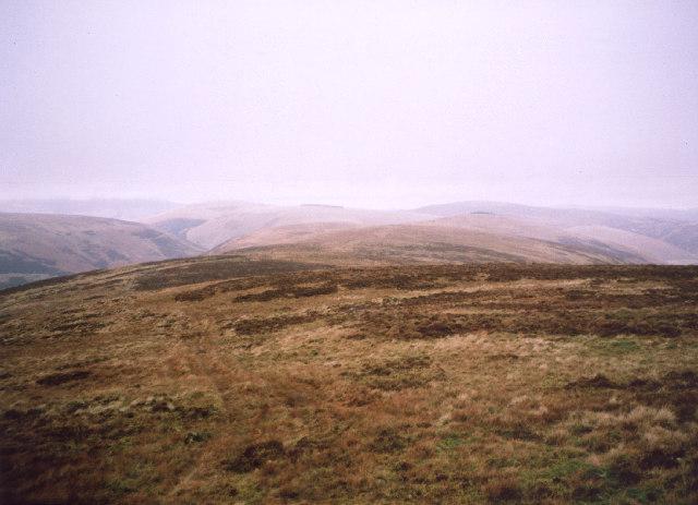 Rough Moorland on Heatherstane Law