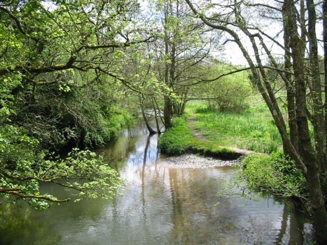 River Frome near Maiden Newton