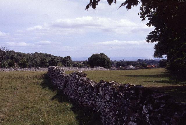 Limestone Walls near Leyburn