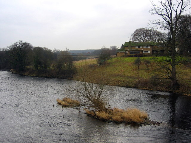River Wharfe, Wetherby