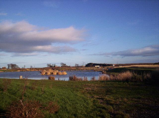 """""""Geordie's Pond"""" at Kinaldie Fisheries"""