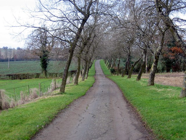 Driveway to Kingston Farm