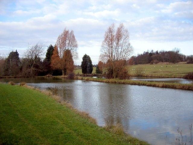 Ponds at Kingston Farm