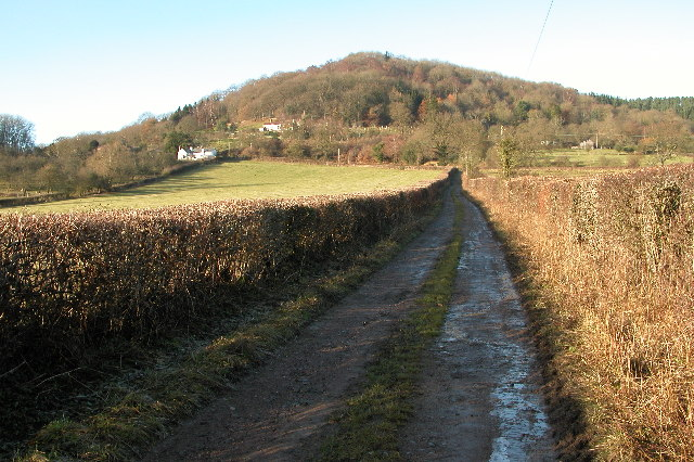 Backbury Hill