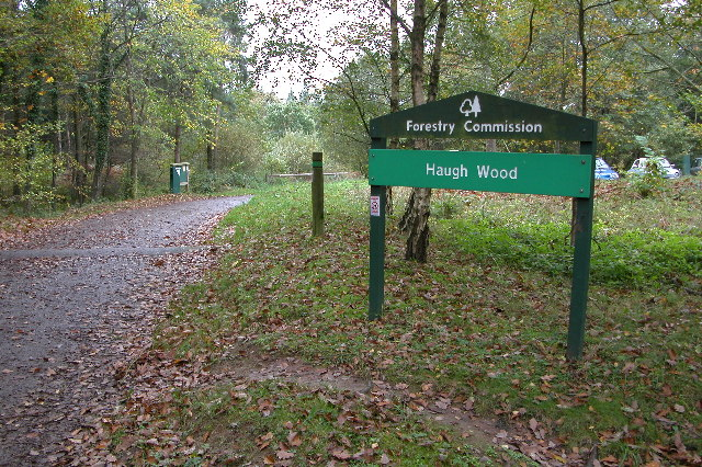 Haugh Wood