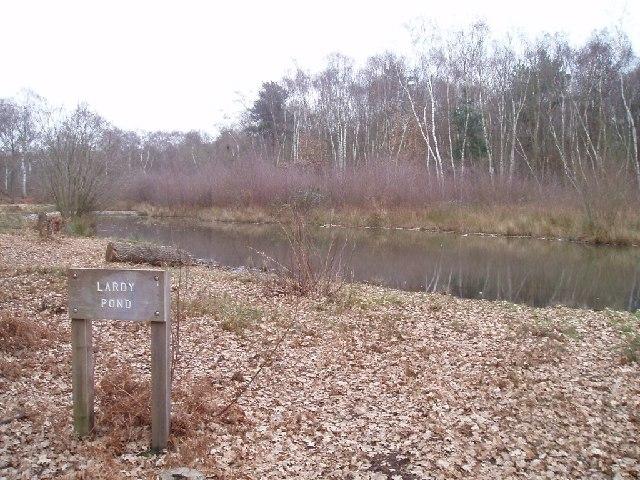 Lardy Pond