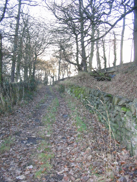 Bridleway leading up to Woodsome Road