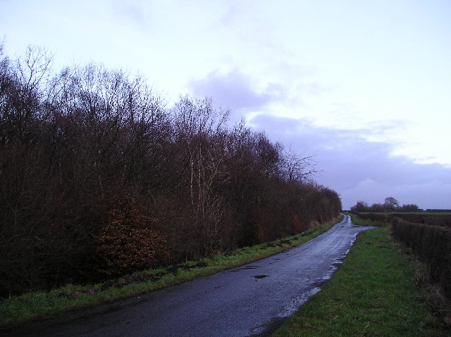 Sevenacres Wood