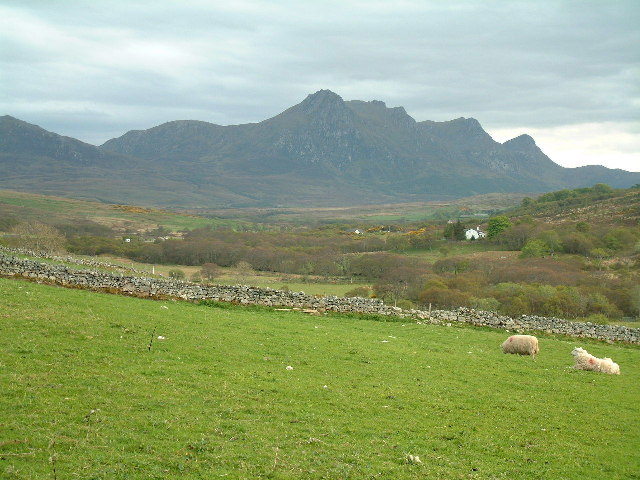 View of Ben Loyal