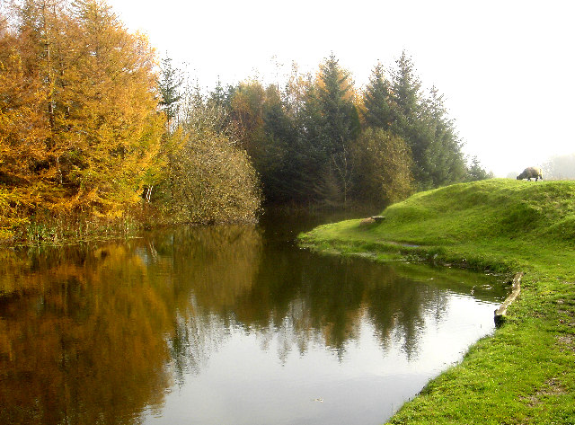 Hallmore Trout Fishery