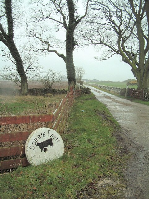 Access road to Sorbie Farm
