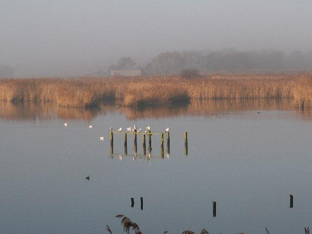 Titchfield Haven Nature Reserve