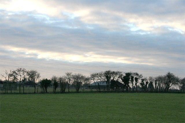 Looking northwest towards Lyewood Farm
