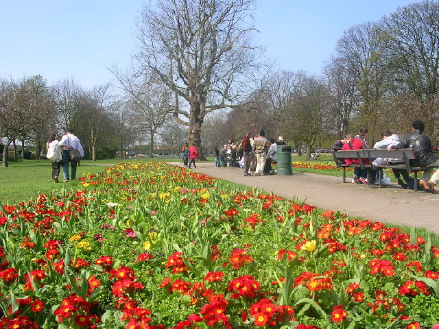 Spring at Alexandra Gardens