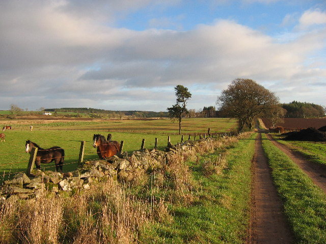 Gask Ridge Roman Road