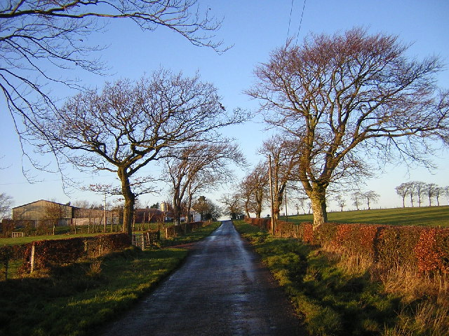 Country Road Near Drumbuie
