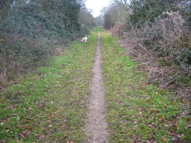Bridleway towards Clothall